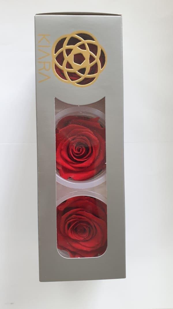 Trandafiri criogenati | Petal Flowers