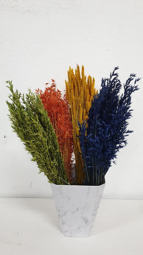 Spice de grau | Petal Flowers