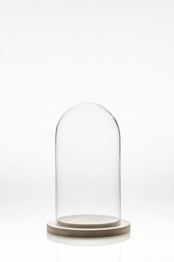 cupola sticla 10 cm | Petal Flowers